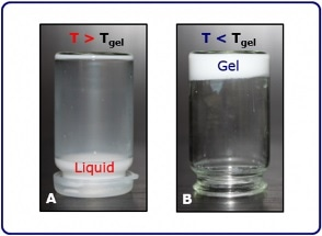 Examining a Gelatin Solution's Gelation Temperature
