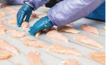 Increasing Product Sampling of Chicken Breasts with Automated Inspection
