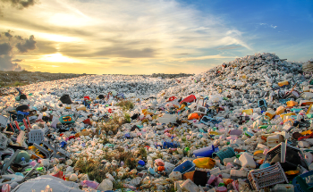 Using Enzymes and Microorganisms to Improve the Future of Plastic Recycling