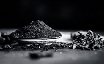Analysis of Particle Size Distribution in Porous Powders