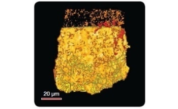 Using 3D X-Ray Microscopes for Carbon (CO2) Sequestration Experiments