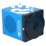 High Resolution Time Lapse Imaging with the Retiga R3™ CCD Camera