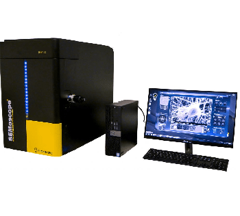 Achieving High Quality Images of Non-Conductive Samples via SEM with the ION COATER