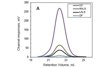 Using Size Exclusion Chromatography to Overcome Negative Effects of Protein Structure on Molecular Weight Measurement