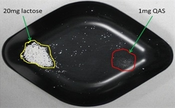Using Laser Diffraction Particle Size Analysis to Detect the Presence of Anomolous Large Particles within Powders