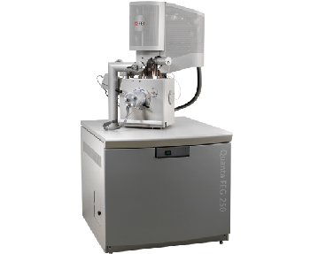 Thermo Scientific Quanta SEM