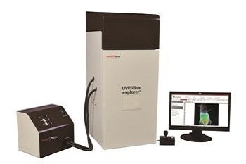 Imaging Microscope - iBox® Explorer™²