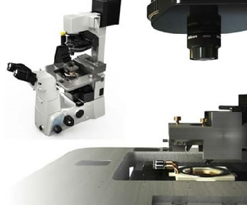 Park Systems XE-Bio Atomic Force Microscope