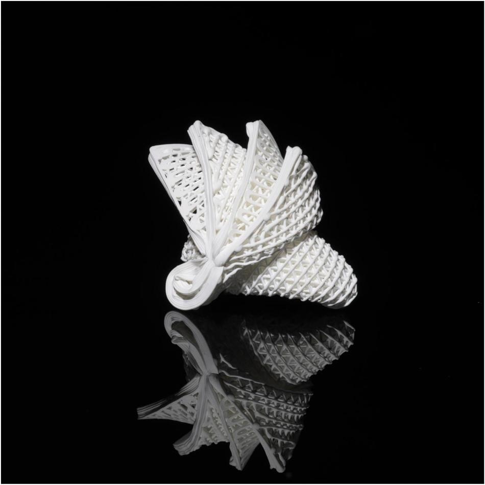 World's First-Ever 4D Printing for Ceramics