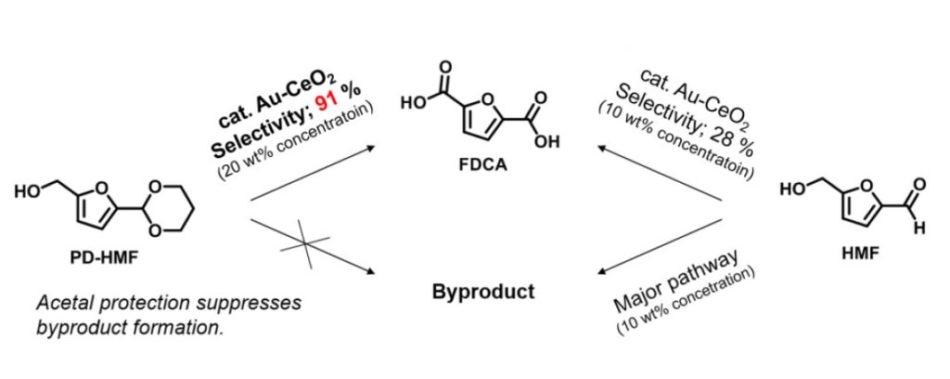New Technique Enables Mass Production of Bio-Based Plastic Bottles