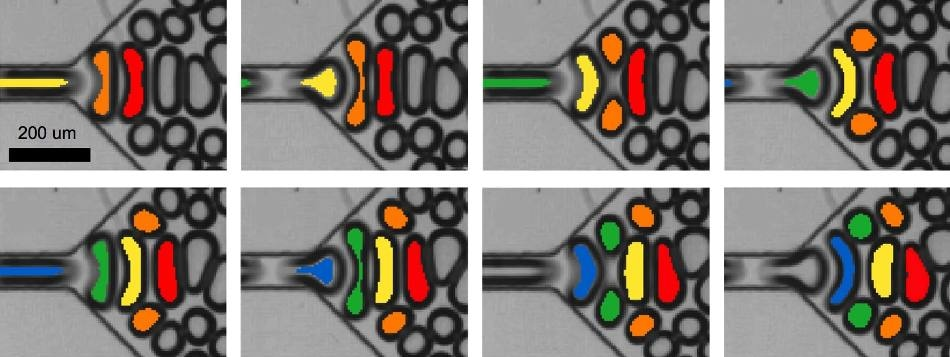 New Microfluidic Device Produces Tiny Bubbles in Distinct Sizes