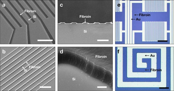 Making of Silk Fibroin-Based Biodegradable Electronic Devices Using AMoS