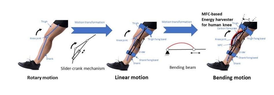 New Energy Harvester Attached to Knee Could Power Small Electronics