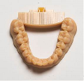 Stratasys Ltd., Announce Availability of VeroDentPlus Dental Material for 3D Printing