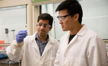 Scientists Developing New Biorenewable Composite Materials for Auto Parts from Trees