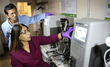 Breakthrough Research on Lignin Could Transform Economics of Biofuel Production