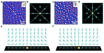 Direct In Situ Analysis of Phase Transition of Liquid Crystal Topological Defects