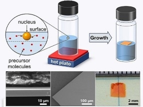 New Strategy for Growing Perovskites into Centimeter-Scale, Highly Pure Crystals