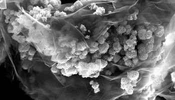 Novel Nanostructured Anode Material Could Extend Capacity and Cycle Life of Lithium-Ion Batteries