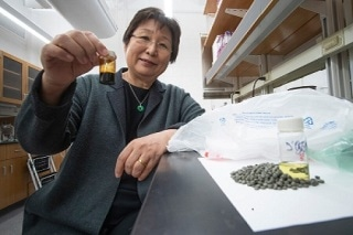 Polyolefin Waste Could Be Turned into Polymers: Research at Purdue University