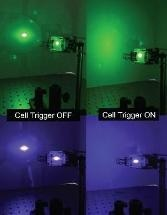 Researchers Work on Liquid Crystals to Deflect Laser Pointer Attacks on Aircraft