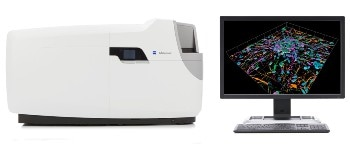 Automated Microscope for Gentle and Fast Confocal 4D Imaging