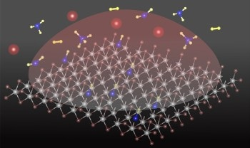 Carbon Atom Added into 2D Semiconducting Material can Transform its Properties Drastically