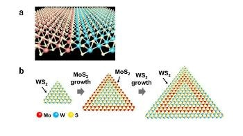 Researchers Engineer 2D Transition Metal Dichalcogenide Heterostructures