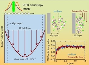 New Insights into Nanoscopic Slip Layers Formed in Flowing Complex Liquids