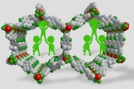 High-Quality Fluoride Nanocrystals for Flexible Antiferromagnetic Devices
