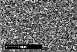 SEM image of compact shaped grains.