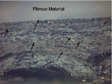 Oil Hose Failure Case Study Using Ftir Tga And Microscopy