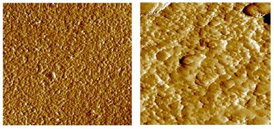 AZoM - Metals, Ceramics, Polymer and Composites : Particle Size and Particle Size Distribution – The Measurement and Modelling for Ceramic Casting Slips Using the Mastersizer 2000 : Microstructure changes observed during sintering. The micrograph on the left shows the dispersed particles within the ceramic green body. On the right the structure following sintering is shown for the same material. Here the grains have grown to form an interlocking network.