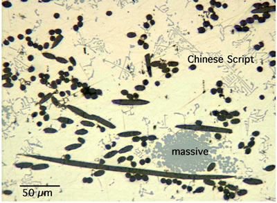 AZoJoMo – AZoM Journal of Materials Online : Micrograph of AZ31+7C+4Si – MMC.