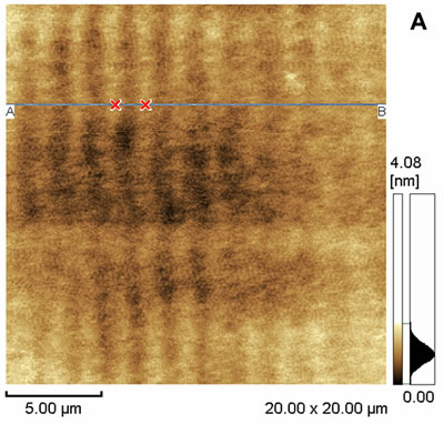 AZoJoMO – AZoM Journal of Materials Online - 20 x 20 mm2 dynamic mode AFM images of the surface of PVCi film. 2-D display of the AFM data;